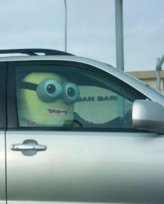 funny-things-on-the-road-105-5b62c4c2c7593__605