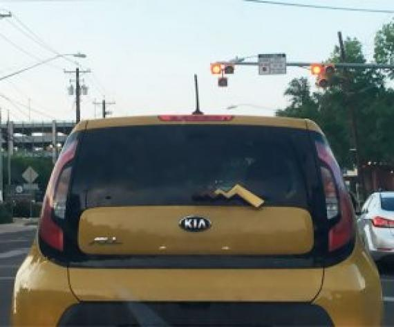 funny-things-on-the-road-101-5b62b34208a00__605